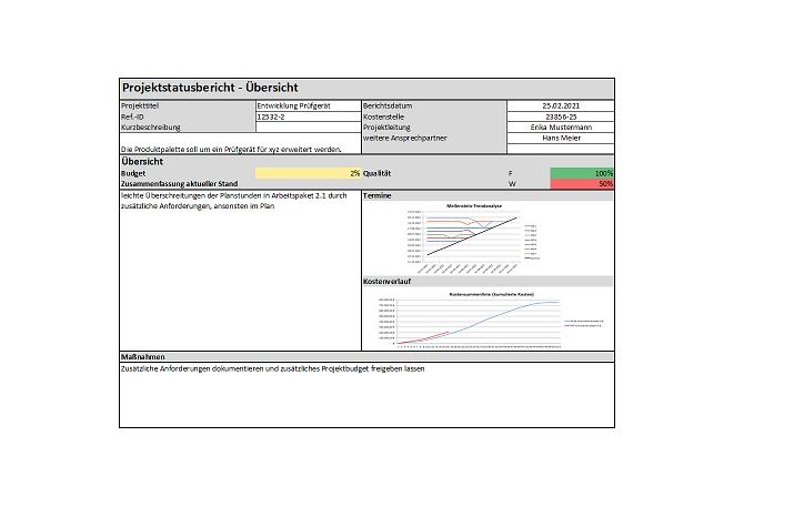 Projektstatusbericht preview